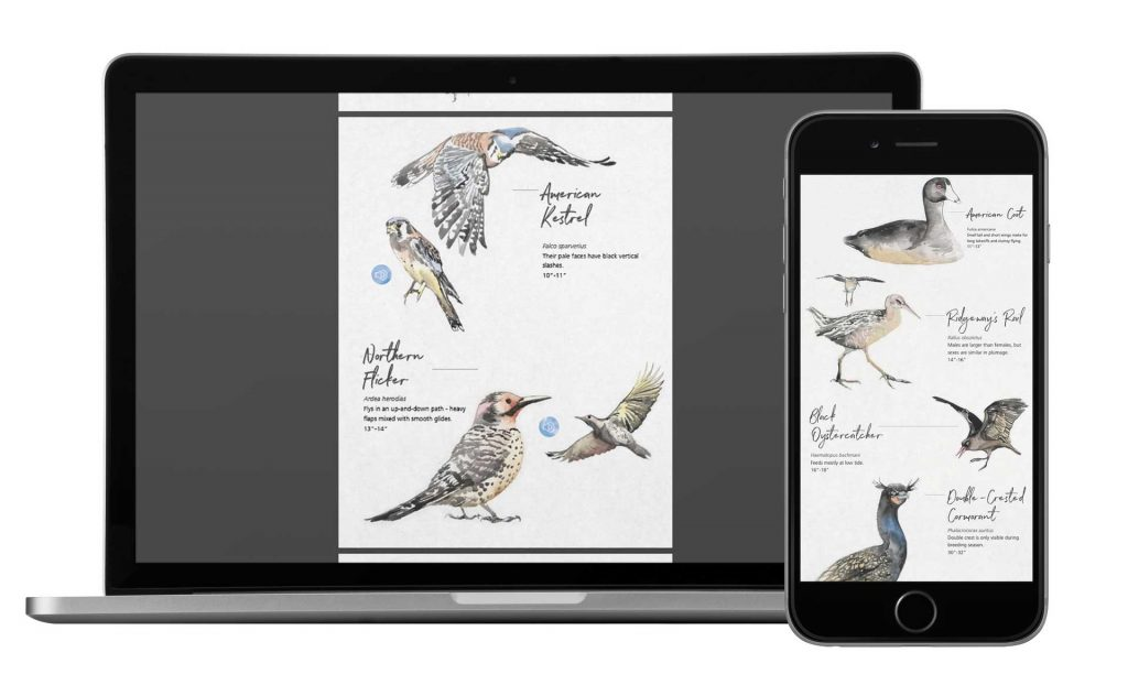 bird_guide_mock_up_post